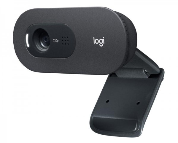 LOGITECH C505E Long Range HD web kamera OEM